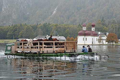 königssee schifffahrt fahrplan winter